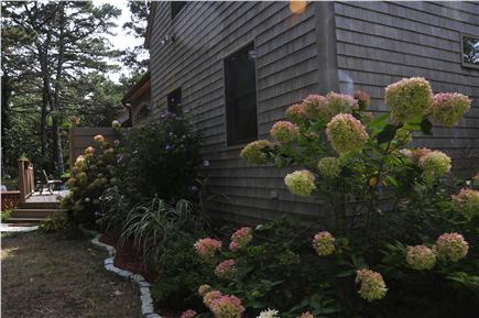 Wellfleet Cape Cod vacation rental - Lush Gardens