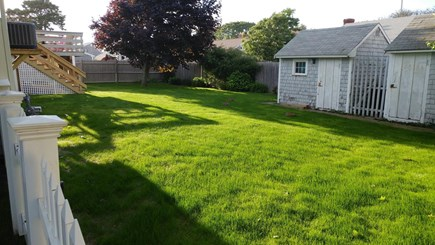 West Dennis Cape Cod vacation rental - Lush lawn in private backyard with Cape Cod bunnies stopping by.