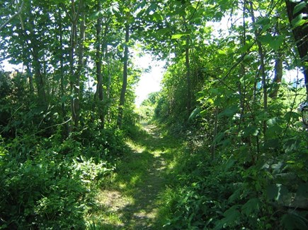 Manomet Manomet vacation rental - Pathway at end of road that leads to stairs to the beach