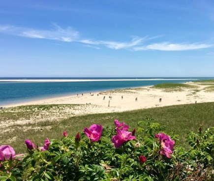 South Chatham Cape Cod vacation rental - Lighthouse Beach-ever changing, breathtaking! Park free @4:31 PM