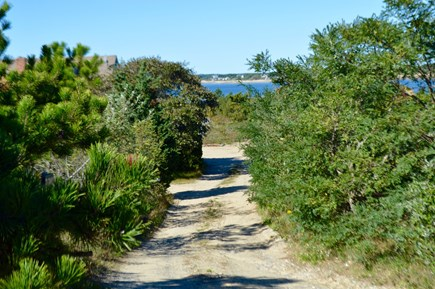 Wellfleet Cape Cod vacation rental - Road to house