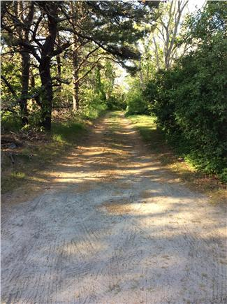 South Wellfleet Cape Cod vacation rental - Driveway to house.