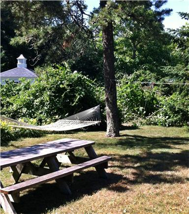 Chatham Harbor Fish Pier Cape Cod vacation rental - Hammock and Picnic table