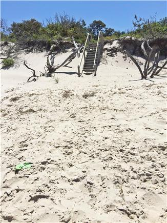 Brewster Cape Cod vacation rental - Path from cottage to beach