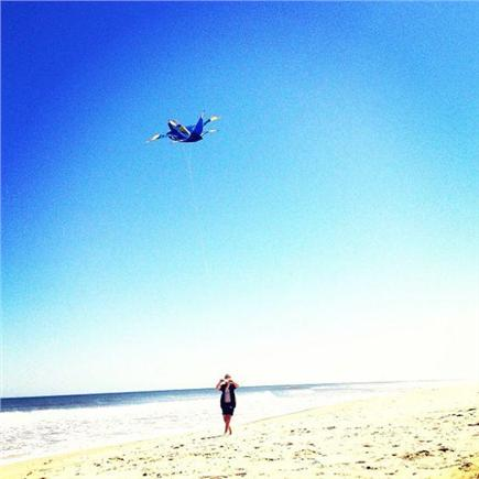 Wellfleet Cape Cod vacation rental - Flying kites at the nearest ocean beach, Lecount Hollow!