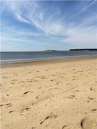Wellfleet Cape Cod vacation rental - Beautiful Mayo Beach is steps away from the house