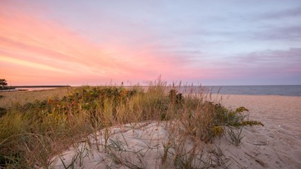 New Seabury, Popponesset New Seabury vacation rental - Poppy Sunset