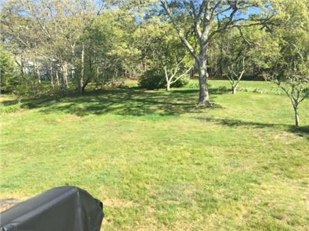 Harwich Cape Cod vacation rental - Back Yard (Rail trail runs behind the trees)