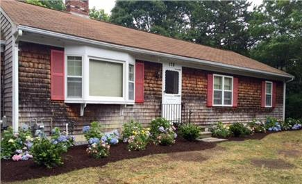 Mashpee Cape Cod vacation rental - Hydrangeas for that Cape Cod look!