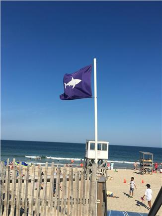 Brewster Cape Cod vacation rental - The Bay is a quick walk & the National Seashore is a short drive.