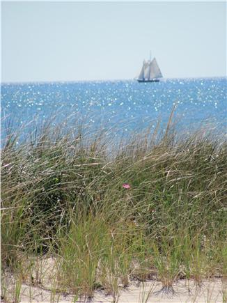 North Truro Cape Cod vacation rental - View from cottage