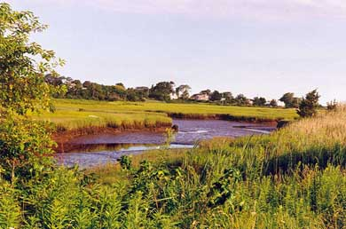 Barnstable Village Cape Cod vacation rental - View from deck of Salt Marsh at Low Tide