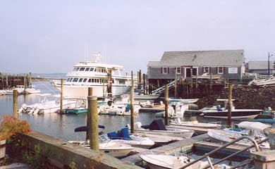 Barnstable Village Cape Cod vacation rental - Barnstable Harbor and Whalewatch Boat