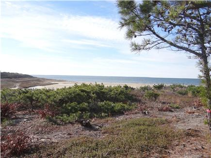 Wellfleet Cape Cod vacation rental - From the cottages