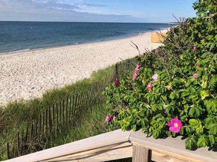 South Yarmouth Cape Cod vacation rental - Steps to our white sandy beach facing West towards Hyannis