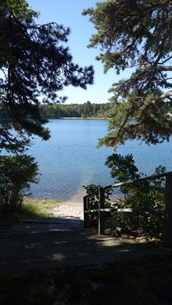 East Harwich Cape Cod vacation rental - Our beach is about 60 feet...now you can enter the pond.
