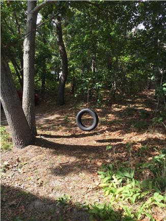 Eastham Cape Cod vacation rental - Tire swing