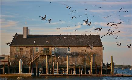 Provincetown Cape Cod vacation rental - Provincetown Pier