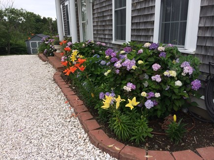 Sandwich Cape Cod vacation rental - Professionally landscaped gardens.
