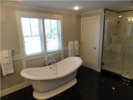 Provincetown, West End Cape Cod vacation rental - Master Bathroom #1 with shower, soaking tub and fireplace.