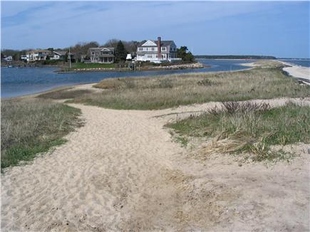 Mashpee, Popponesset Cape Cod vacation rental - The Spit is 500 yards from cottage. Small sea creatures!
