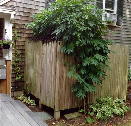 Barnstable Cape Cod vacation rental - Outdoor Shower; heavenly experience with hot / cold water.