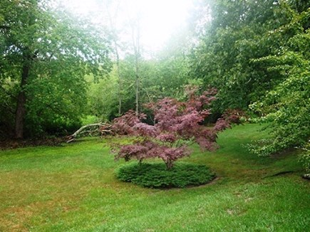 Wellfleet Cape Cod vacation rental - Beautiful and well maintained grounds