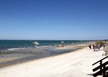 Brewster Cape Cod vacation rental - relax and enjoy the beautiful beach