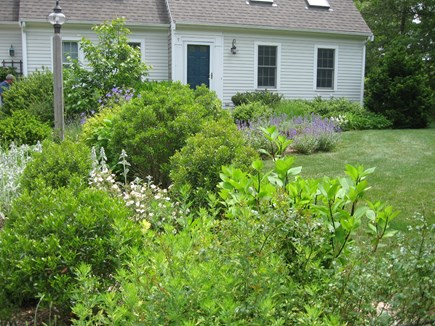Orleans Cape Cod vacation rental - Lovely gardens surround the home