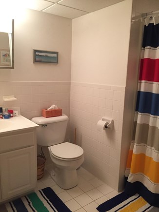 Harwich Cape Cod vacation rental - Full bathroom in basement