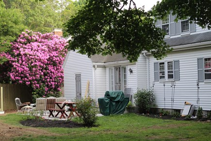 Falmouth Cape Cod vacation rental - Large private yard with patio, grill and large outdoor shower