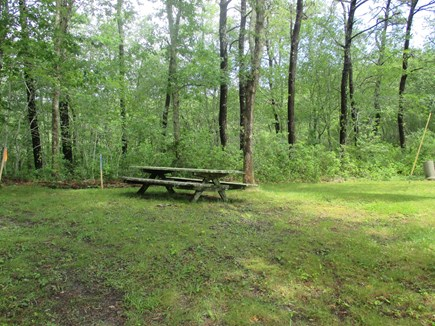 Truro Cape Cod vacation rental - Picnic area closer to pond