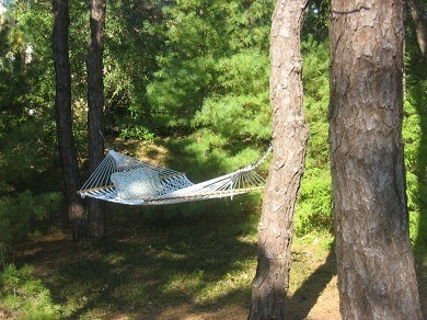 Eastham Cape Cod vacation rental - Relax and enjoy the hammock!