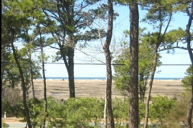 Eastham Cape Cod vacation rental - Enjoy Views of Marsh and First Encounter from house or hammock!