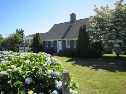 Orleans Cape Cod vacation rental - Beautiful home with hydrangeas in bloom.