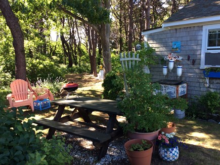 North Truro Cape Cod vacation rental - Picnic area, gas grill , chairs for relaxing outdoors