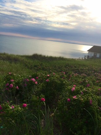 North Truro Cape Cod vacation rental - Cold Storage Beach view