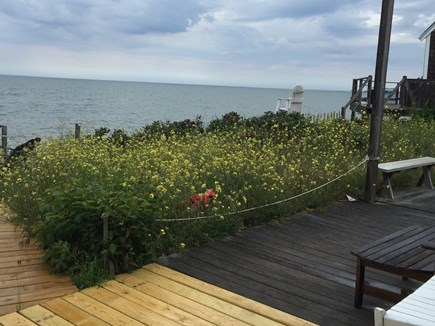 Eastham Cape Cod vacation rental - View Cape Cod Bay from deck looking toward Wellfleet/Billingsgate