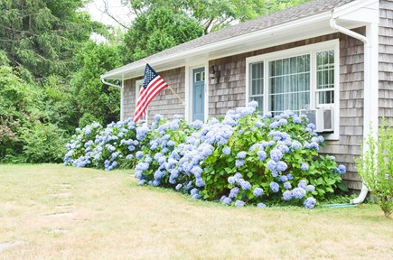 Dennis, North 6A, Bay Beaches! Cape Cod vacation rental - Front of house in quiet, quaint neighborhood.  Lovely walks await