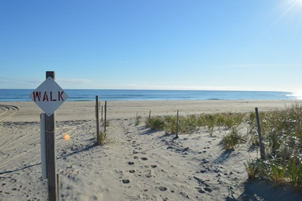 East Orleans Cape Cod vacation rental - You can easily walk to the beach in just minutes