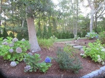 Mashpee/New Seabury New Seabury vacation rental - Back Yard
