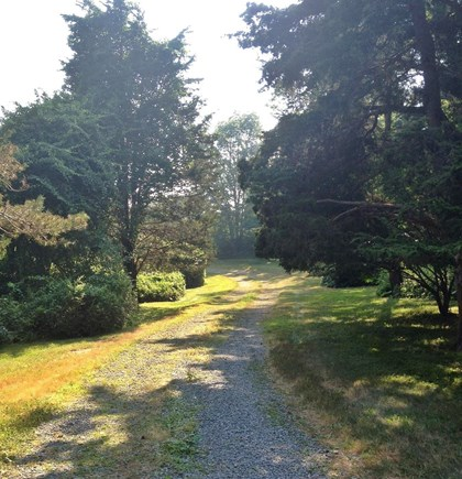 East Orleans Cape Cod vacation rental - Driveway