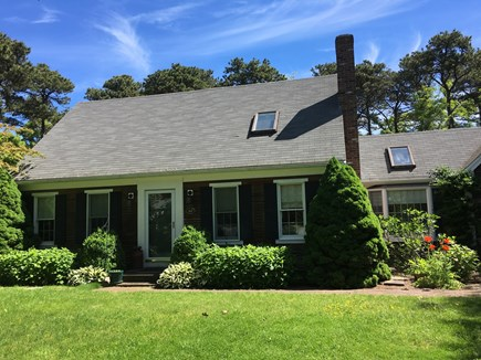 Eastham Cape Cod vacation rental - The poppies blooming in June got leaves on the fig tree