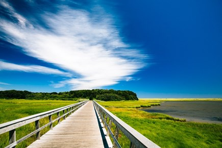 Eastham Cape Cod vacation rental - Near Cape Cod National Seashore and Cape Cod rail bike trails