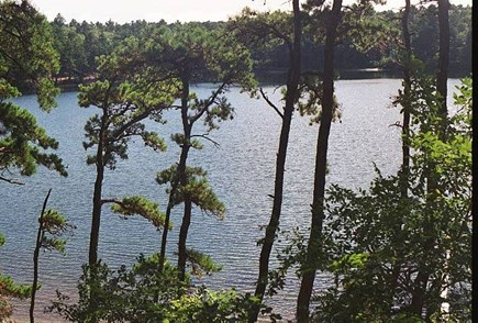 Wellfleet Cape Cod vacation rental - Nearby Picturesque Dyer Pond