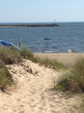 Wellfleet Cape Cod vacation rental - Mayo Beach/Harbor walking distance. Four eateries there too!