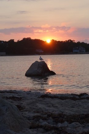 Woods Hole Woods Hole vacation rental - Beach at sunset!