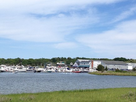 West Dennis Cape Cod vacation rental - Beautiful blues and greens!
