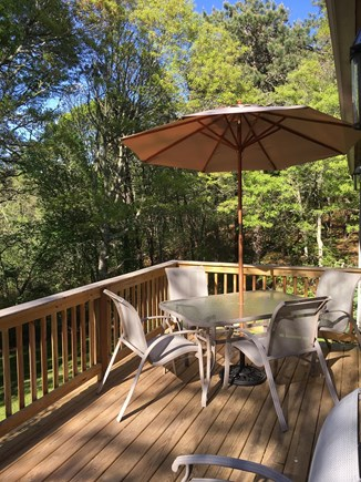 East Dennis/Brewster line Cape Cod vacation rental - Back deck with steps to outdoor shower