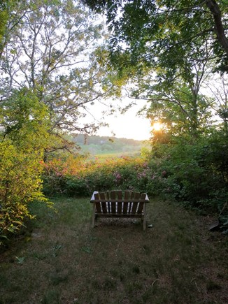 Wellfleet Cape Cod vacation rental - Sunset at Marsh-View Cottage: unwind here after the beach